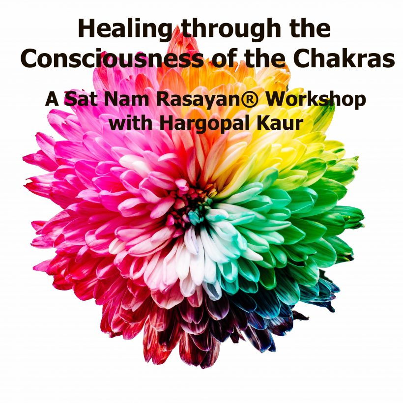 Healing Through the Consciousness of the Chakras