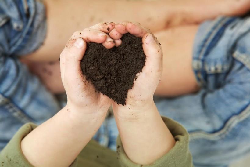 Why I Love Dirt